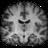 resources/qt4gui/share/pixmaps/orientation_coronal.png